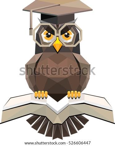 Vector Owl Symbol Science Education Stock Vector 2018 526606447