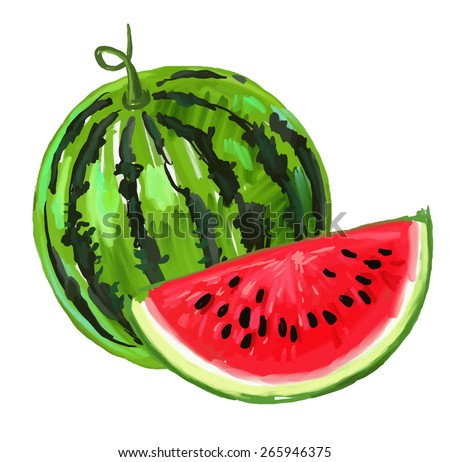 vector paint hand drawn picture of watermelon - stock vector