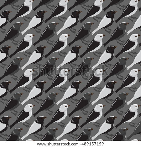 Vector pattern with birds sparrow.