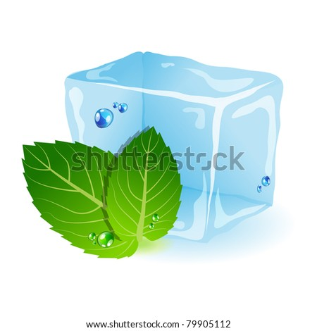 Vector picture with ice and mint leaf - stock vector