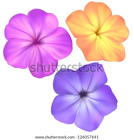 Vector pink, yellow and blue flowers isolated on white background - stock vector