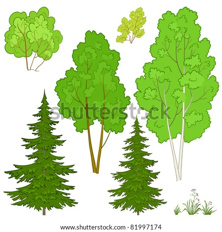 Vector, plants: trees and flowers, isolated on a white background - stock vector