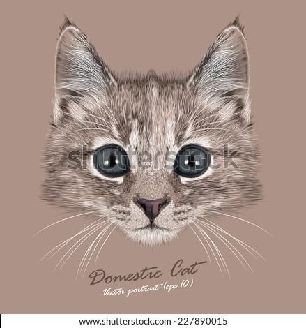 Vector Portrait of  Domestic Kitten. Cute tortoise color kitten (female).  - stock vector