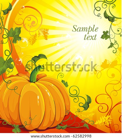 Vector pumpkins and leaves in the sun. Classical illustration with Place for your text.