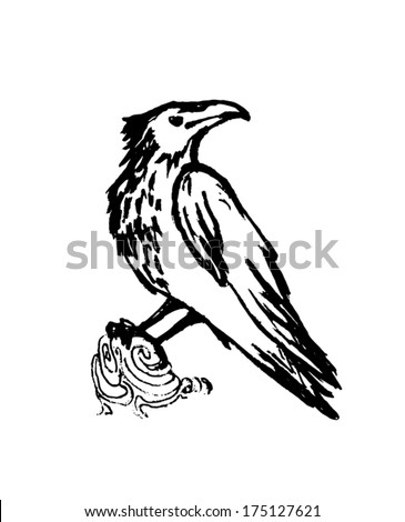 Vector raven black sketch on a white background. - stock vector