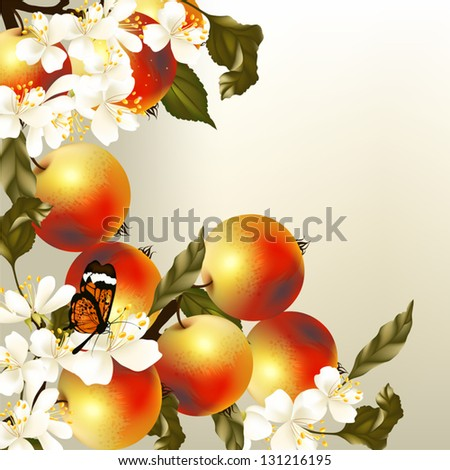 Vector realistic background with fresh apples on branch - stock vector