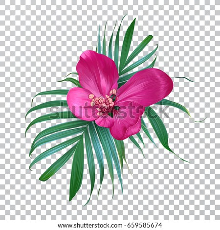 Vector Realistic Flower And Palm Leaves On A Transparent Background Exotic Floral Trendy Colorful