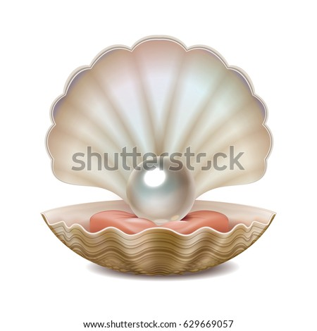 Vector Realistic Opened Shell Shining Pearl Stock Vector