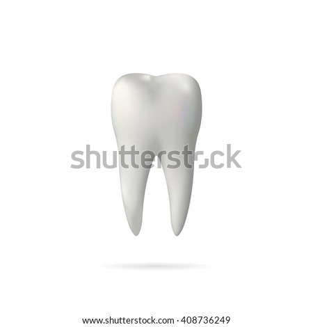 Vector realistic tooth isolated on a white background. - stock vector