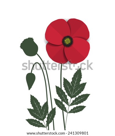 Vector red romantic poppy flowers and grass - stock vector