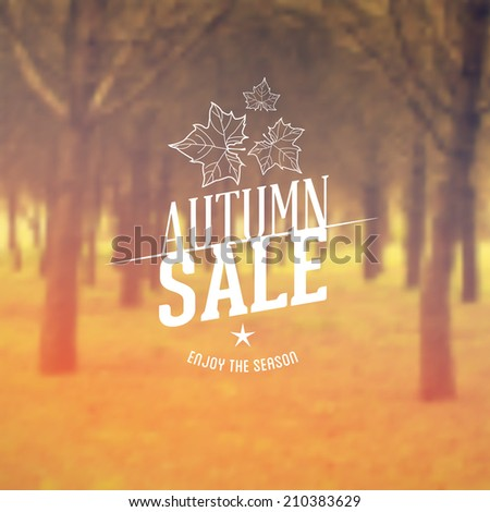 Vector Retro Autumn Sale typography. Fall Label in blurred autumn landscape background.  - stock vector
