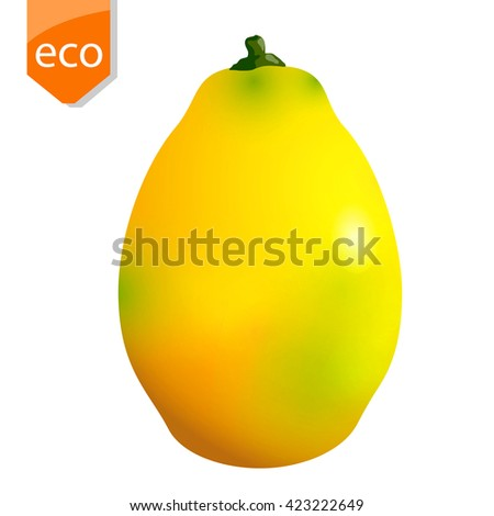 Vector ripe mango fruit, isolated on a white background - stock vector