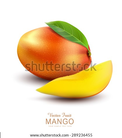Vector ripe mango fruit with slices, on a white background - stock vector