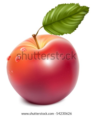Vector. Ripe red apple with water drops. - stock vector