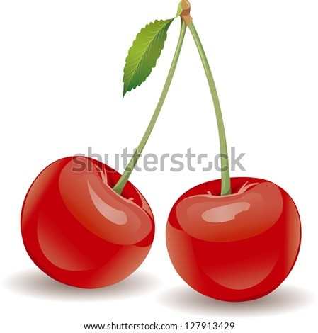Vector Ripe red cherry berries with green leaves isolated on white background