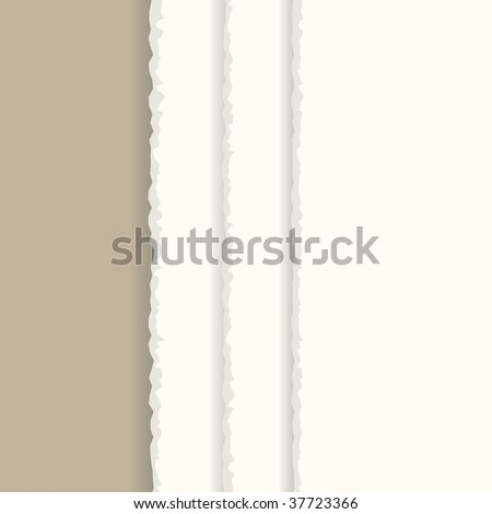 Vector - Ripped paper sheet background with copy space for text - stock vector
