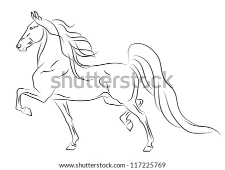 Vector running American Saddlebred horse sketch - stock vector