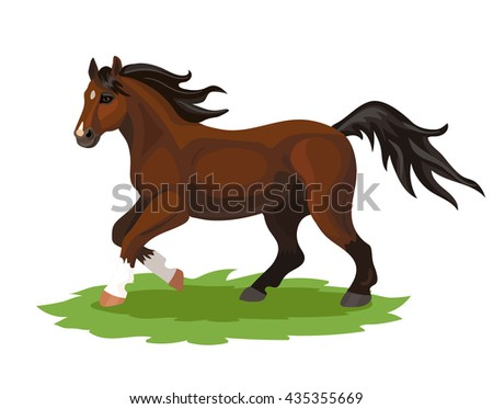 Vector running brown horse with white spots