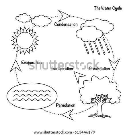 Water Cycle Stock Images, Royalty-Free Images & Vectors | Shutterstock