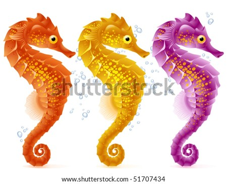 Vector sea horse - stock vector