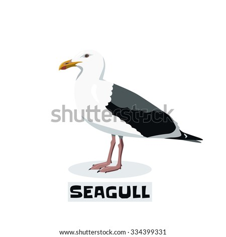 Vector seagull isolated on white background - stock vector