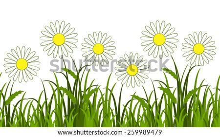 vector seamless border with daisies in grass isolated on white background - stock vector
