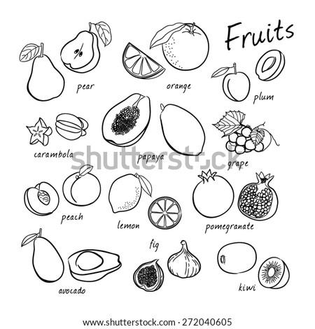 Vector seamless fruits set