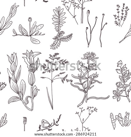 Vector seamless pattern with hand drawn meadow plants.