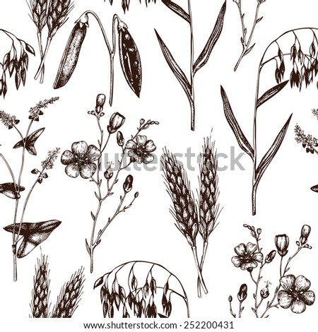 Vector seamless pattern with ink hand drawn agriculture plants sketch. Eco food and plants background. Vintage oats illustration - stock vector