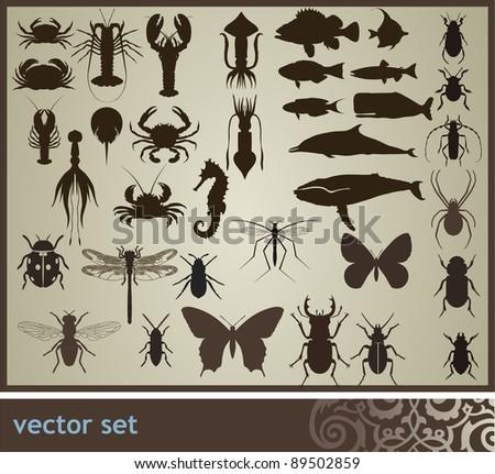 Vector set - stock vector