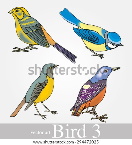 vector set: birds - variety of vintage bird illustrations - stock vector