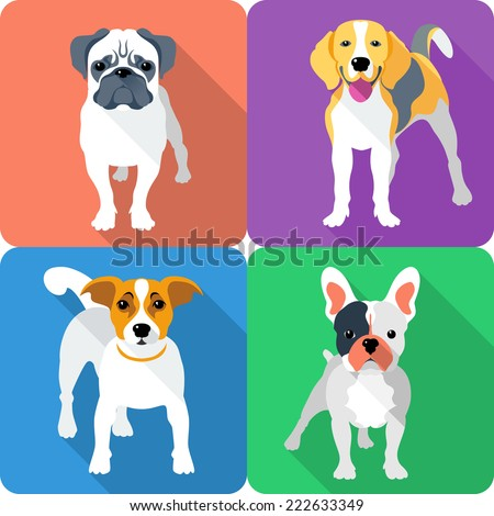 Vector set dog icon flat design - Jack Russell Terrier, French Bulldog, Pug and Beagle breed - stock vector