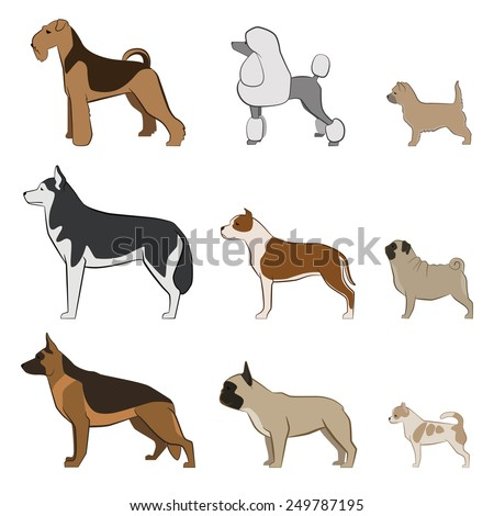 Vector set dogs - stock vector