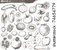 vector set - doodles - science - stock vector
