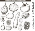 vector set - doodles - vegetables - stock vector