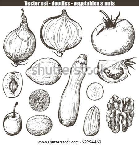 vector set - doodles - vegetables - stock vector