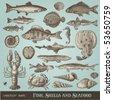 фондовый вектор: векторный набор: рыба, ракушки и морепродукты - разнообразные подробные старинные иллюстрации