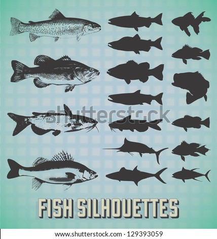 Vector Set: Fish Silhouettes - stock vector