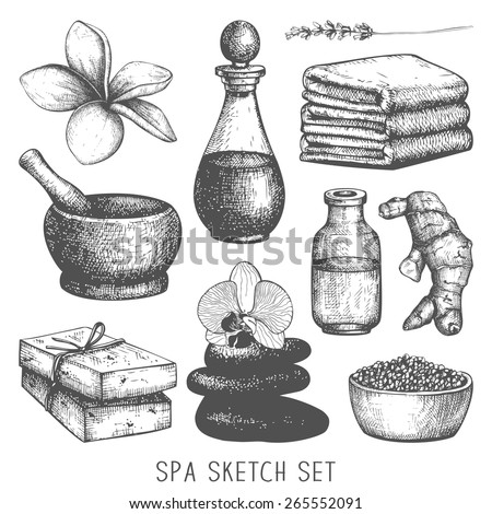 Vector set  ink hand drawn spa illustration isolated on white. Spa sketch vintage collection. - stock vector