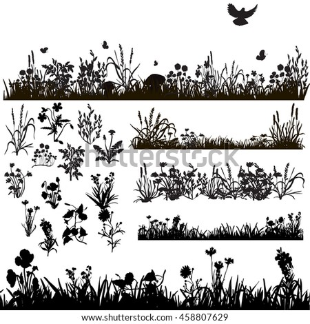 vector, set, isolated, silhouette grass and plants