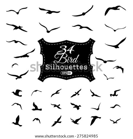 Vector set of bird silhouettes. Black flying seagulls isolated on white background.  - stock vector