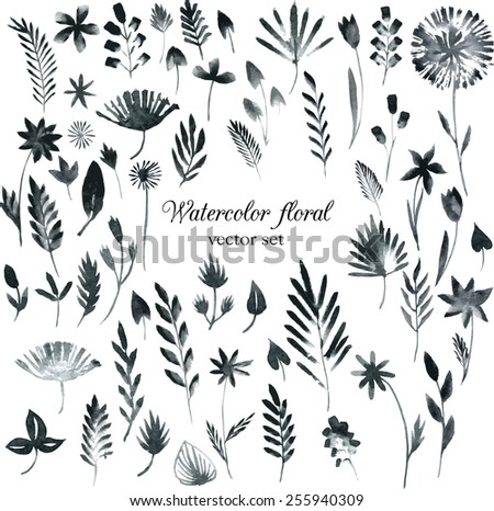 vector set of black monochrome watercolor floral hand drawn elements  - stock vector