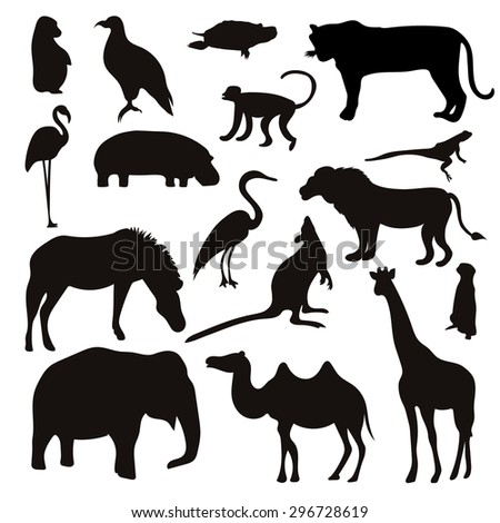 Vector Set of Black Tropical Animals and Birds Silhouettes. Hand drawn vector illustration. - stock vector