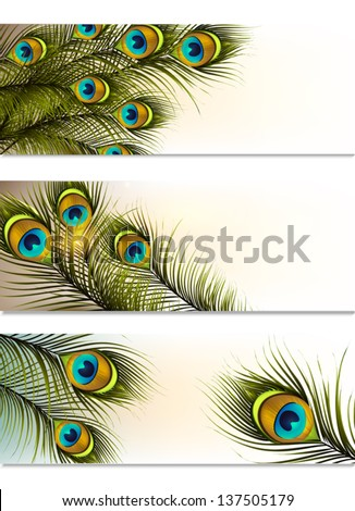 Vector set of business cards with peacock ferns for design - stock vector