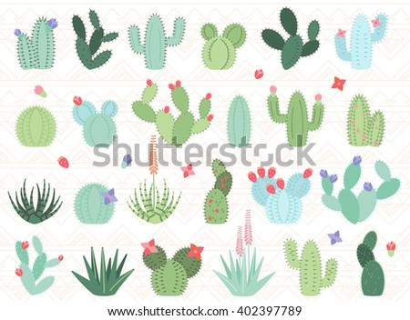 Vector Set of Cactus and Succulent Plants - stock vector