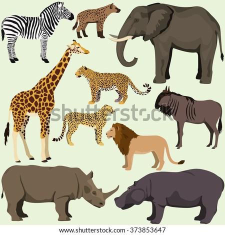 Vector Set Cartoon African Animals Safari Stock Vector