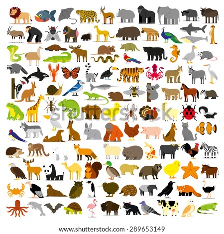Vector Set Of Cartoon Different Animals Isolated - stock vector