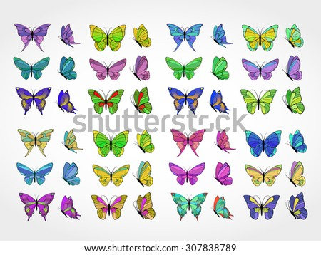 Vector set of colored butterflies
