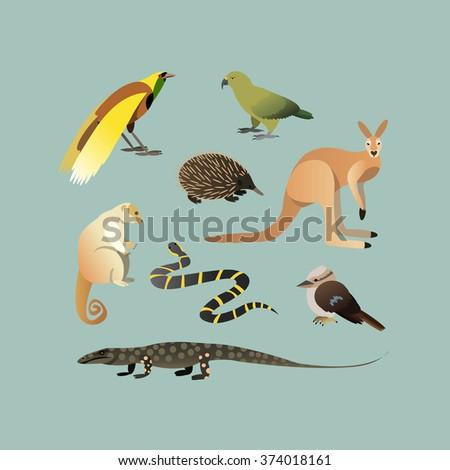 Vector Set Of Different Australian Animals. Animals of Australian Kangaroo Echidna, Couscous, Australian giant lizard, mangrove snake, parrot Kea, Laughing Kingfisher, Big bird of paradise.  - stock vector