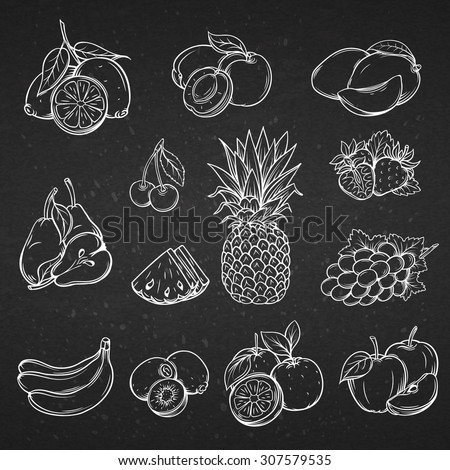 Vector set of different hand drawn decorative fruit . White line on the black .
